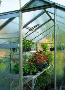 What Should Be Considered If You Like To Have A Greenhouse?