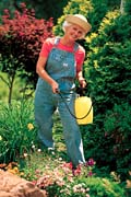 Is Garden Pest Control Helps To Get Rid Of The Unwanted Guests Present In Your Garden?