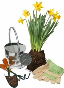 Protect Your Garden With Proper Lawn And Garden Equipment
