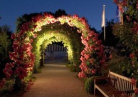 Landscape Lighting To Enhance The Beauty Of Your Garden At Night Time!