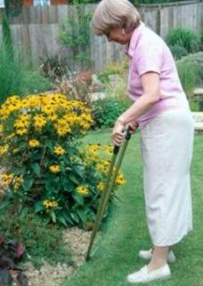Improve Your Knowledge About Lawn Maintenance For Healthy Lawn!