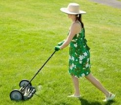Lawn Mowers To Maintain The Beauty Of Your Lawn!