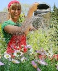 Water Gardening To Make Your Garden Look Extraordinary!