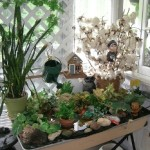 Indoor Gardening To Make Your Home More Attractive!
