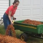 Mulching For Optimum Results