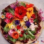Edible Flowers To Add Fun To Your Garden