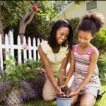 Finding A Focal Point For Your Garden