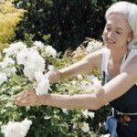 Spring Cleaning Your Garden For The Summer