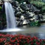 Creating A Tranquil Water Feature