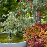 Garden Fountains For A Classical Garden Look