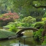 The Garden In The Water