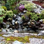 How To Decide On A Decorative Waterscape For Your Backyard Landscaping?