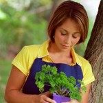 Uses Of Growing Herbs At Home Garden