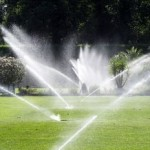 Easy Steps To Maintain The Lawn