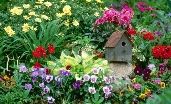 Simple Backyard Flower Gardens : Wild flower gardens are fitted to host flowers already adapted to the