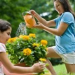 Container Gardening Tips And Tricks - Part 2