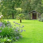 The Garden Lawn And How To Make It Perfect