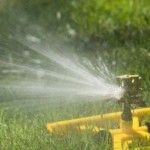 Watering Your Garden With The Suitable Irrigation System