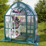 Greenhouses – Small And Affordable Options