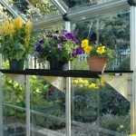 Getting Your Greenhouse Ready For The Winter