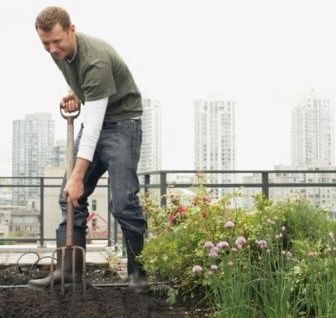 the benefits of having a rooftop garden Parks provide intrinsic environmental, aesthetic, and recreation benefits to our cities  or having a picnic along with these expected leisure amenities,.