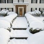 Is Snow Good for Vegetable Gardens?