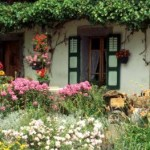 Build a Cottage Garden