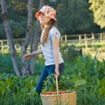 Learning How to Grow a Vegetable Garden