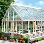 The Art of Growing Orchids in the Hot Glasshouse