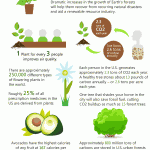benefits of plants infographic