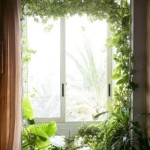 Green Plants in Your Home Can Change Your Life