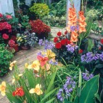 Suggestions to Plan a Garden in Small Space