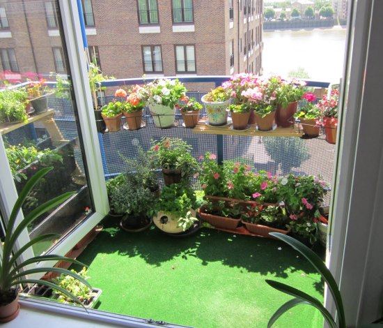 tips for decorating a balcony garden