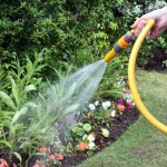 tips for reducing water usage in garden