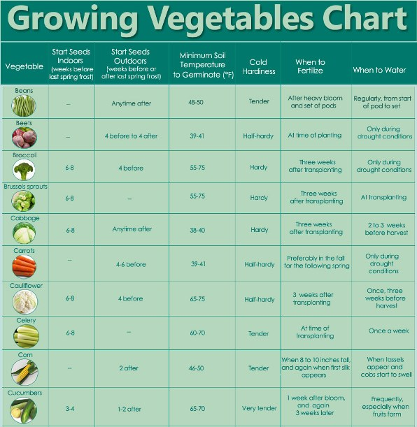 growing vegetables chart1