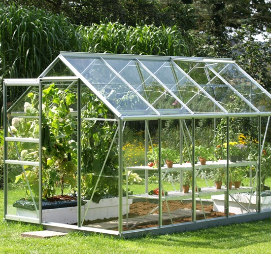 Greenhouse Gardening Tips For Beginners